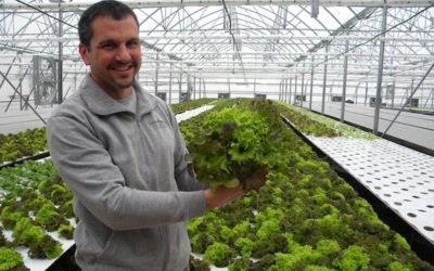 Lior Hessel – Managing Partner Ag–Tech Owner – Growponics Ltd.