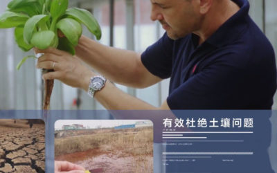Watch New Chinese Video from Weifang Project