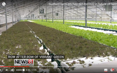 See Our Connecticut Farm on US NEWS8